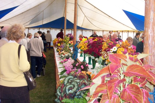 The Flower Tent